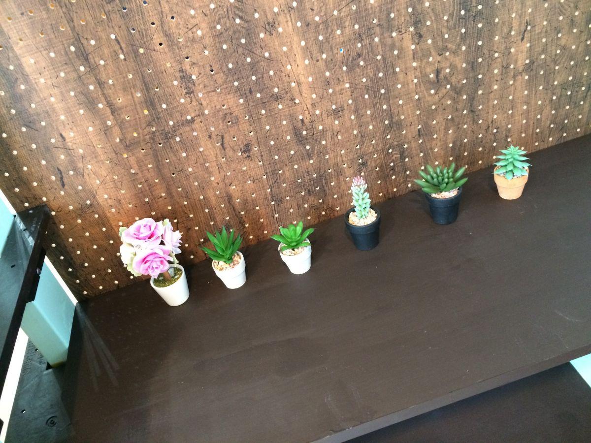 観葉植物とレトロとレコード レコちゃんカンパニー店内公開!!